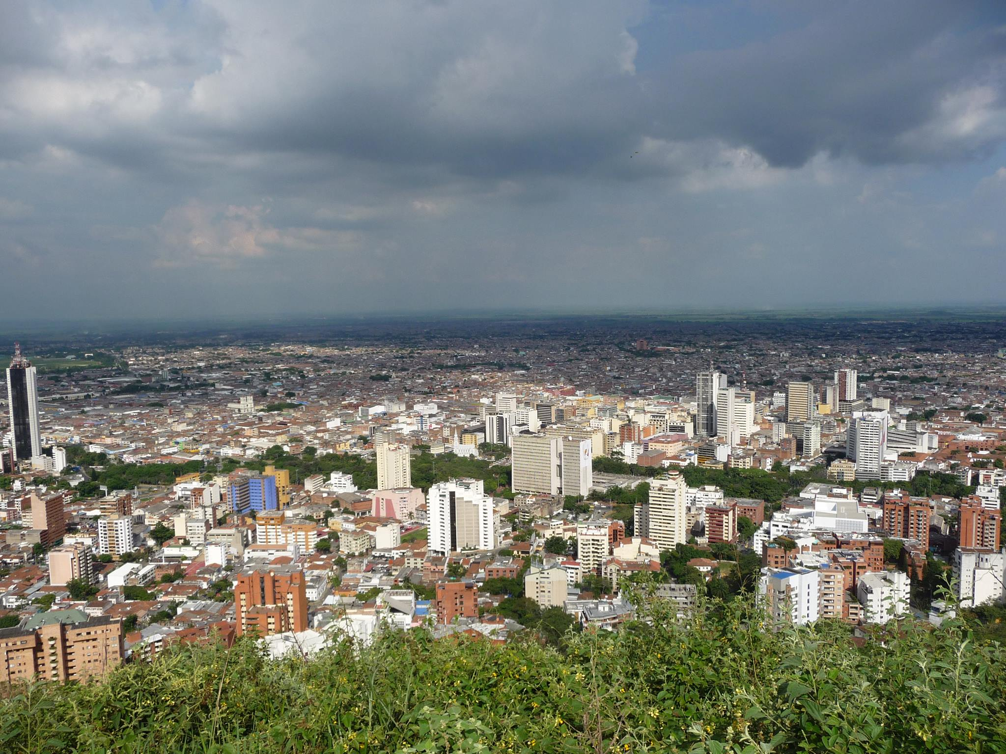 Agriculture And Real Estate In Cali Colombia